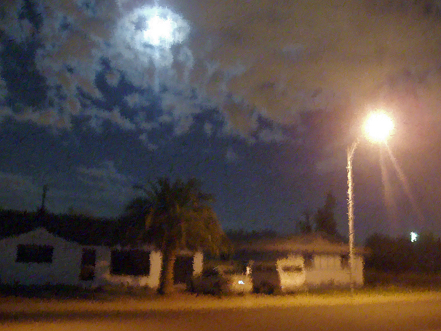 Pale Moon Street Light